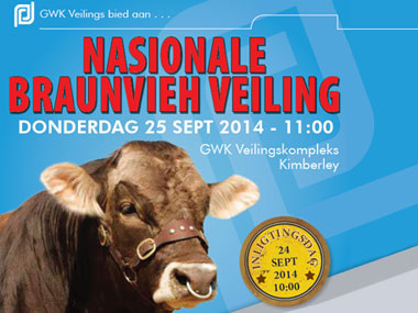 National Braunvieh SA Auction 2014