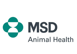 Thank you to our sponsor MSD<br>MSD is a global healthcare leader working to address unmet health needs.